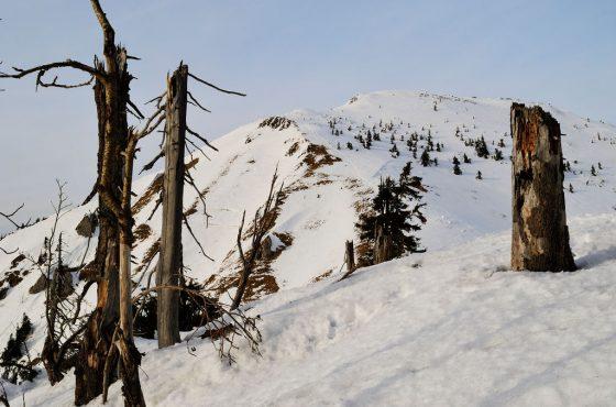 Suchý (1468 m)