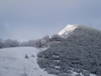 Kouzlo zimní Malé Fatry pod vrcholem Kraviarske