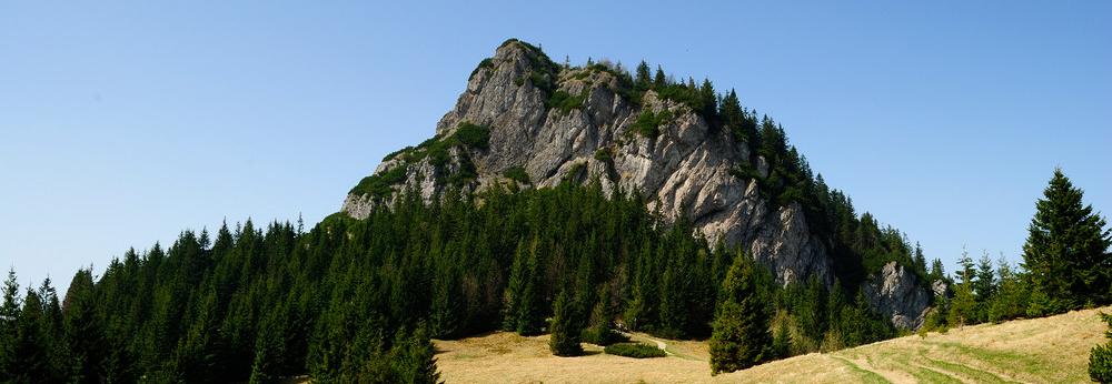 Malý Rozsutec (1343 m)